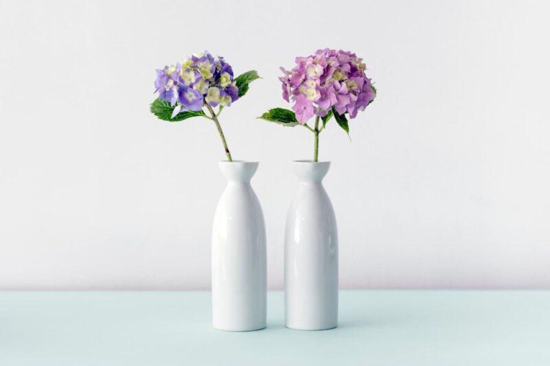 花瓶に刺さったアジサイ